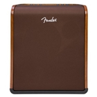Fender Limited Run Walnut Acoustic Guitar Amp