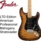 Fender Limited Mahogany American Professional Stratocaster
