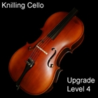 Knilling 4/4 Cello Upgrade